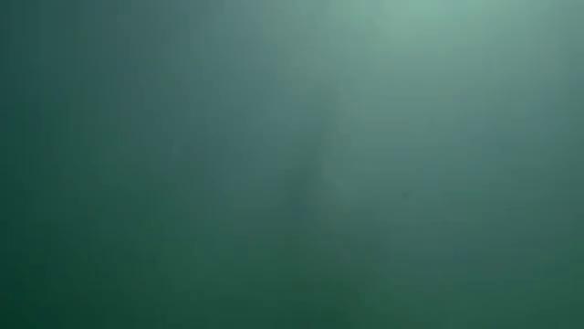 Черные паруса (2 Сезон) - 1 Серия