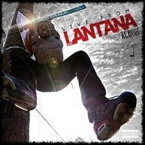 Easy Lantana