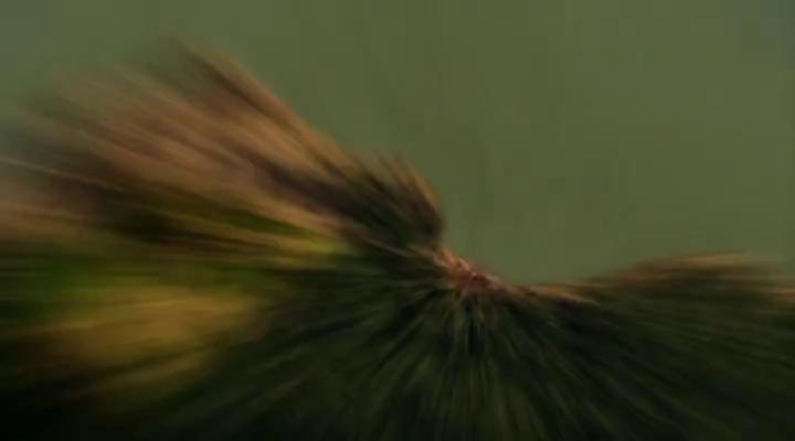 Тайны Смолвиля (8 Сезон) - 3 Серия