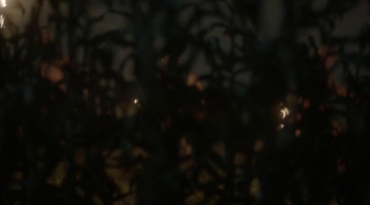 Сосны (2 Сезон) - 6 Серия